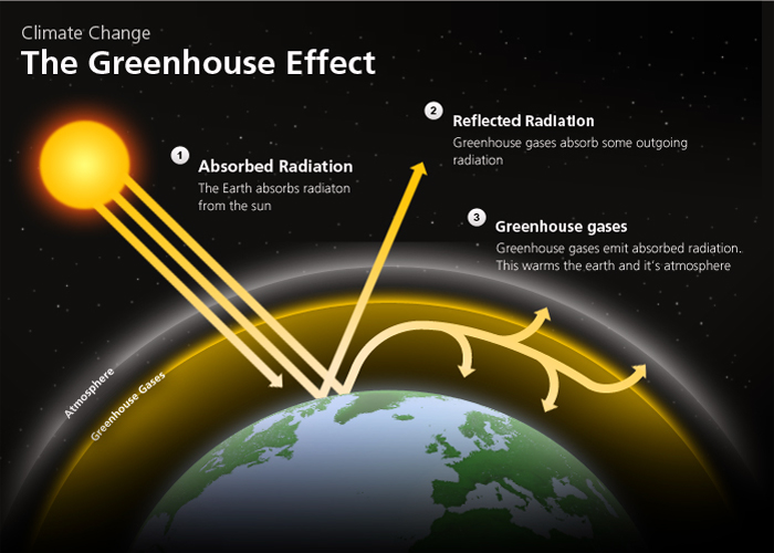 The green house effect for Green housse effect