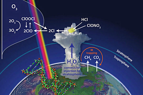 What is destroying the ozone layer?