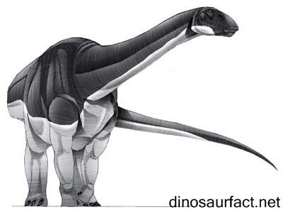 Abrosaurus Dinosaur