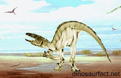 Adasaurus Dinosaur