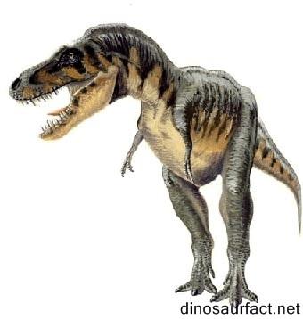 Agrosaurus Dinosaur