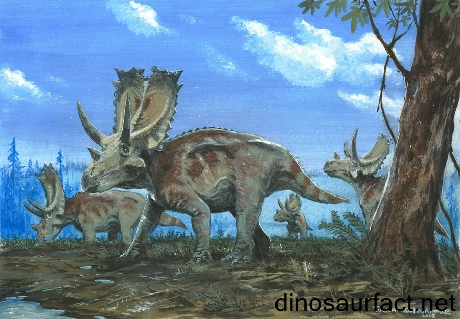 an introduction to the chasmosaurus from the age of dinosaurus Dinosaurs has 18 ratings and 2 reviews ra said: an almost complete a-z field guide of 76 dinosaurs the guide starts off with a small introduction bef.