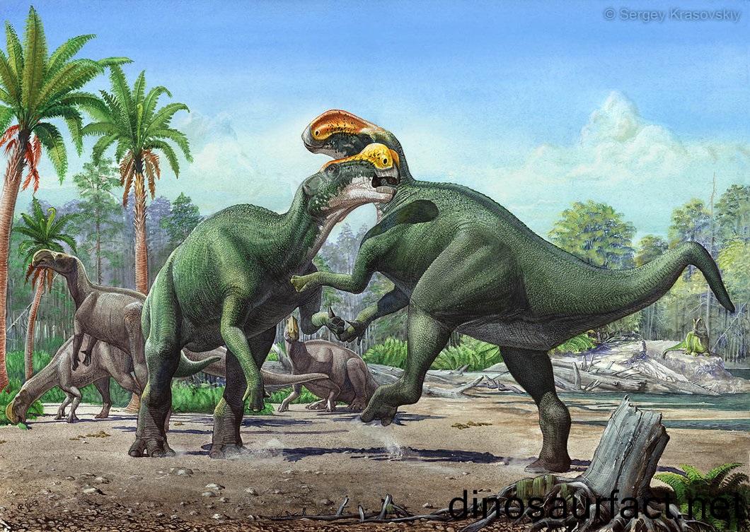 Altirhinus Dinosaur