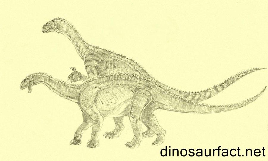 Antetonitrus Dinosaur
