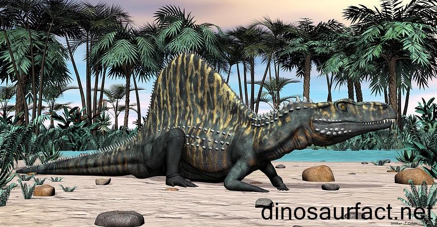 Arizonasaurus Dinosaur