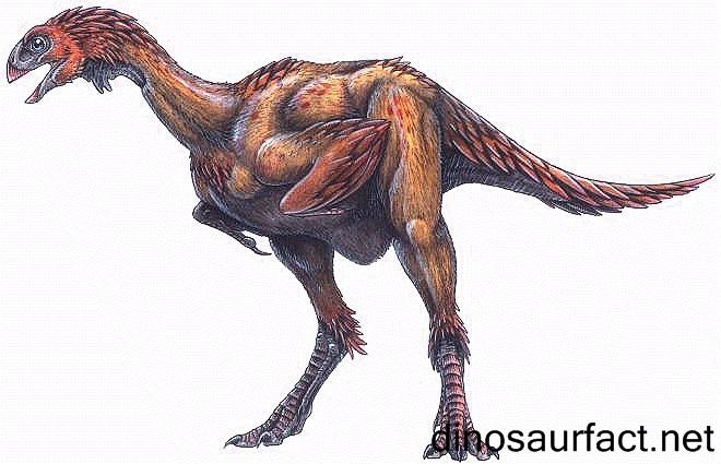 Avipes Dinosaur