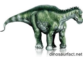 Brachytrachelopan Dinosaur