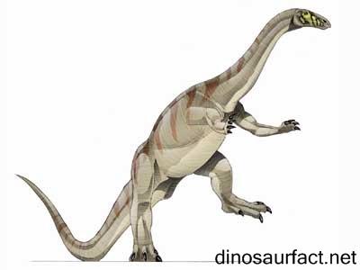 Camelotia Dinosaur