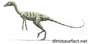 Coloradisaurus Dinosaur