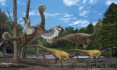 Eocursor Dinosaur