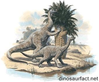 Lessemsaurus Dinosaur