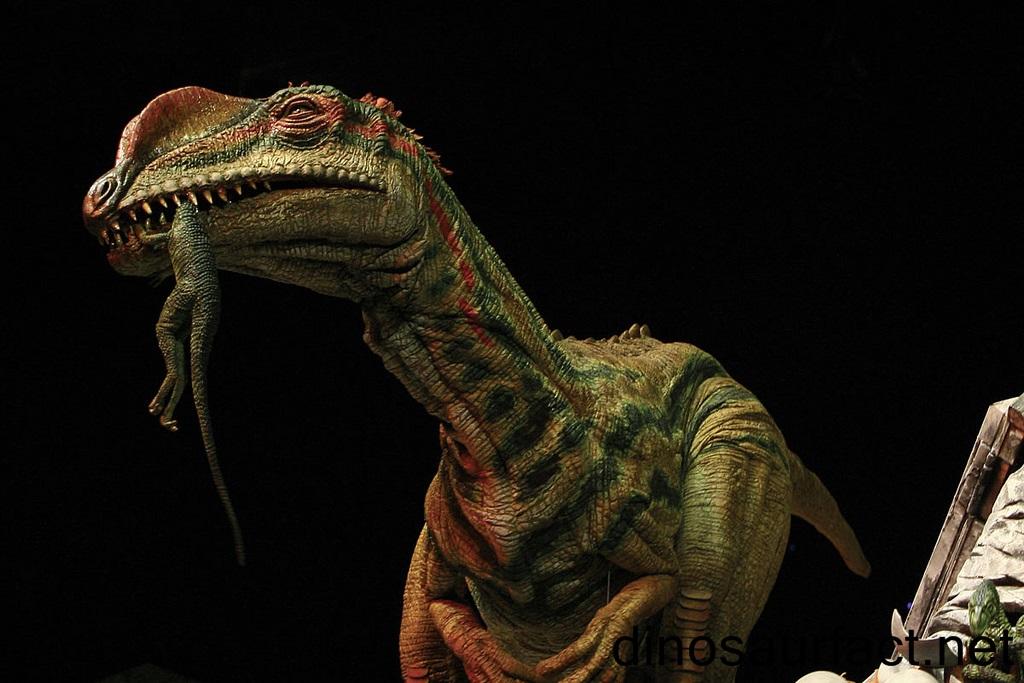Liliensternus Dinosaur