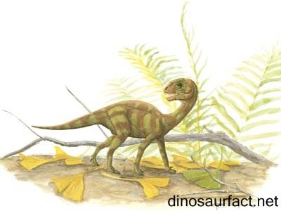 mussaurus dinosaur