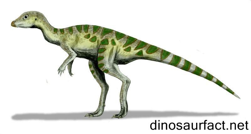 Pantydraco Dinosaur