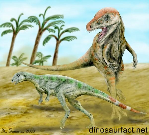 Pisanosaurus Dinosaur