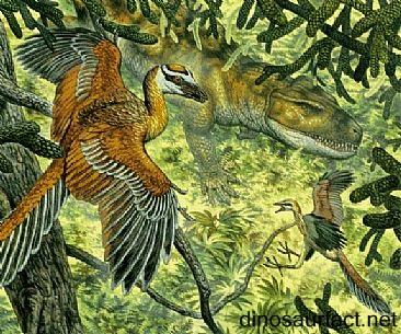 Protoavis Dinosaur
