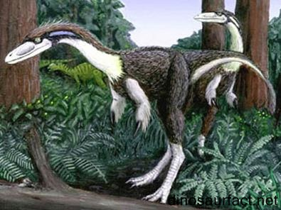 Rapator Dinosaur