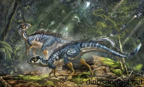 Saturnalia Dinosaur