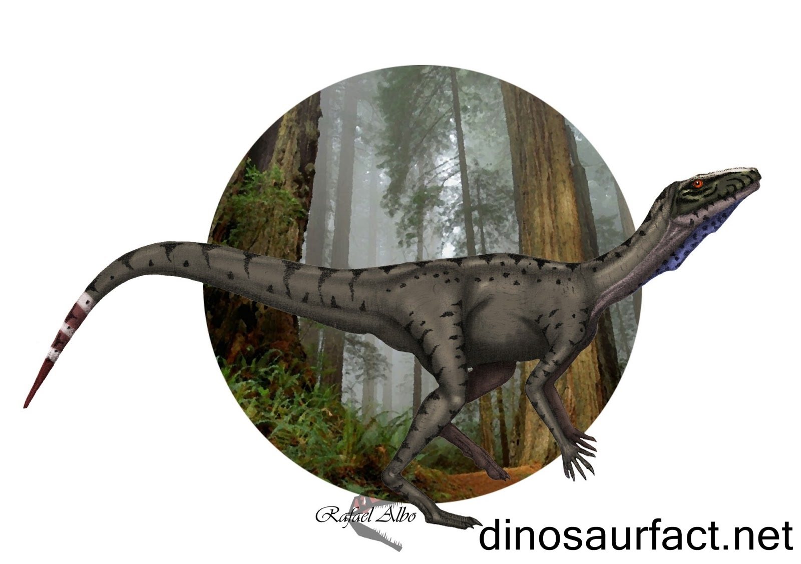 Spondylosoma Dinosaur
