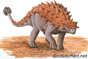 Tarchia Dinosaur