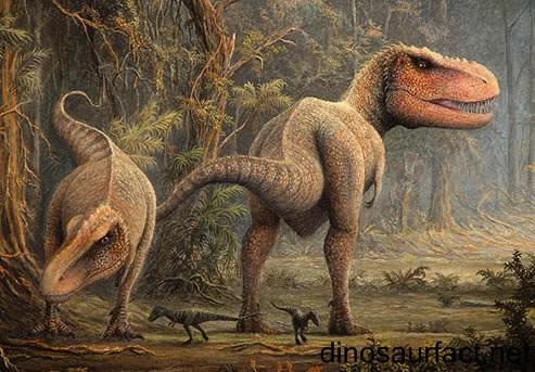 Tyrannosaurus dinosaur for T rex family
