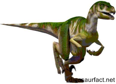 Velociraptor Quick Facts Utahraptor dinosaur