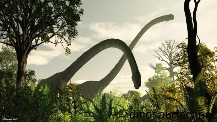 xenotarsosaurus dinosaur coloring pages - photo#29