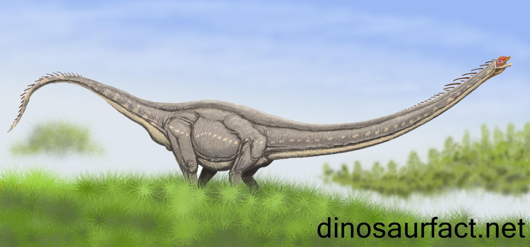 dinosaur train argentinosaurus dinosaur train nodosaurus dinosaur ...