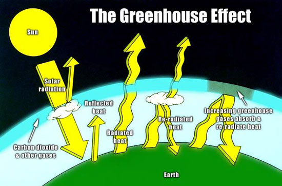Eat less meat to reduce greenhouse gases how we see the for Green housse effect